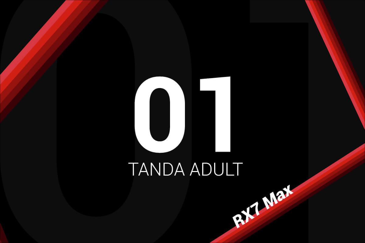 Tanda Sodikart RX7 Max