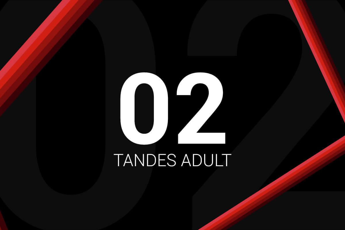 Abonament 2 Tandes Adult