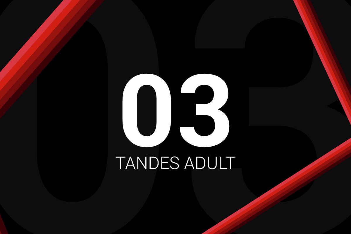 Abonament 3 Tandes Adult